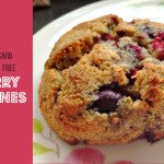 Berry Scone Gluten Free Low Carb