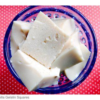 Vanilla Gelatin Squares (Low Carb)
