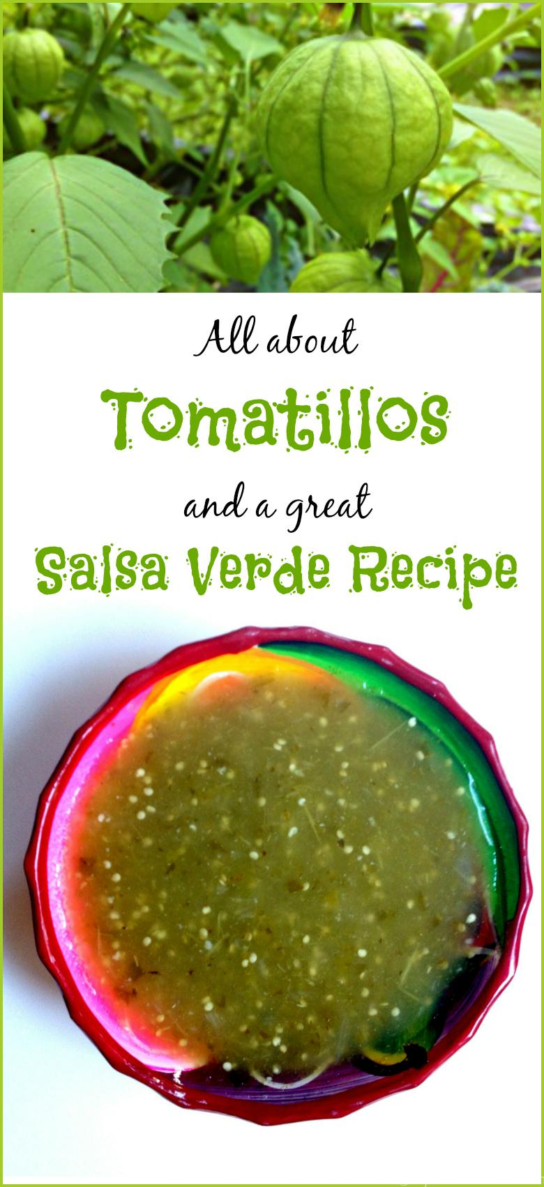 All you want to know about tomatillos and a great salsa verde recipe to try.