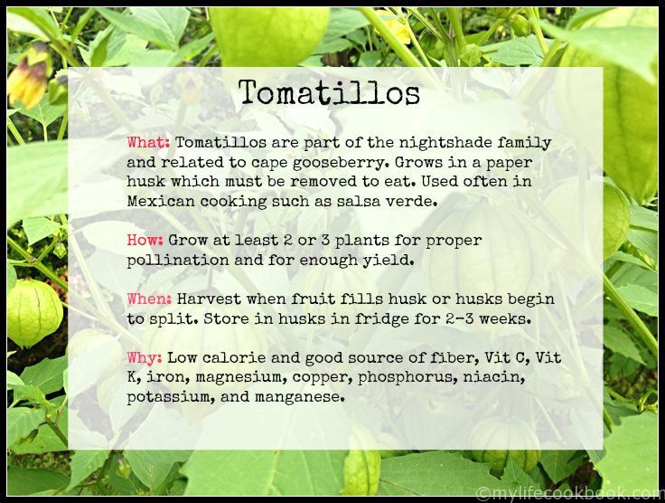 tomatilloinfo
