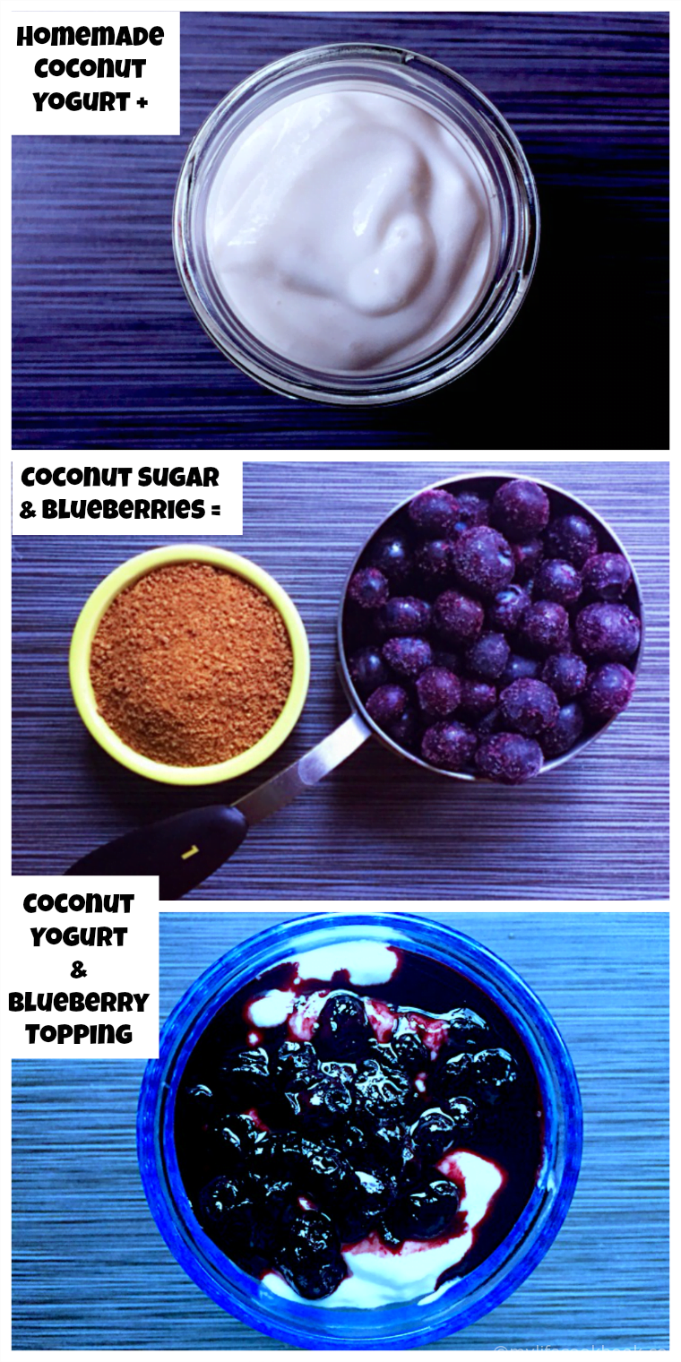 This coconut yogurt with blueberry sauce is easy to make & a great dairy free alternative to yogurt . The blueberry topping is a quick and tasty addition.