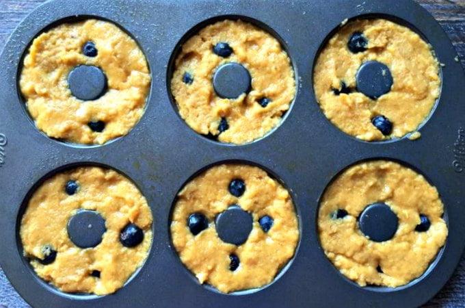 paleo blueberry bagels low carb gf