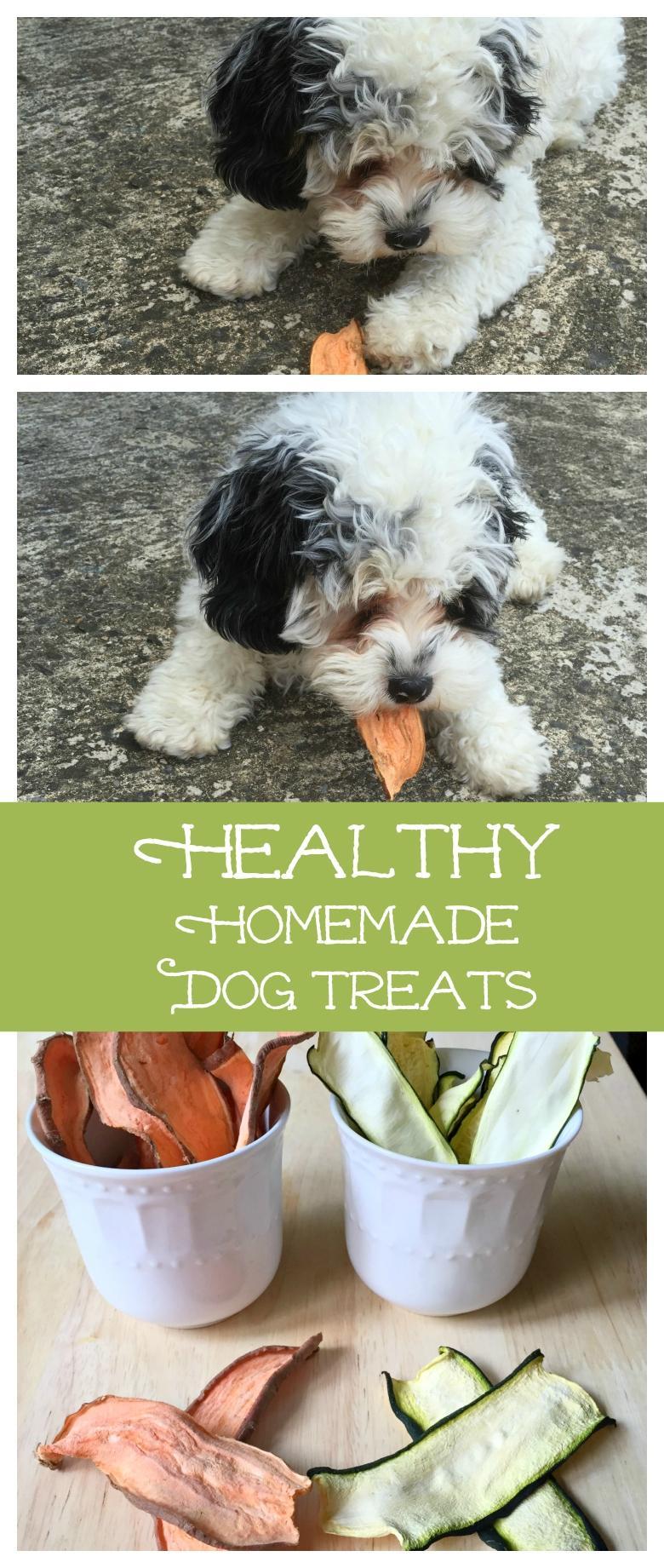 Healthy Homemade Dog Treats My Life Cookbook