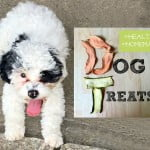 These healthy homemade dog treats are the simplest thing to make and so good for your dog. Plus they are much cheaper than buying them in the store.