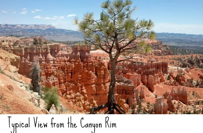 Enjoy this day trip to Bryce National Park.