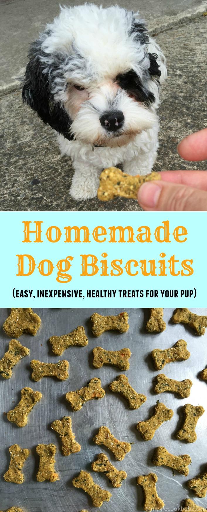 Best Inexpensive Dog Biscuits