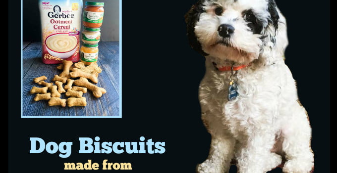 Dog Biscuits Made From Baby Food