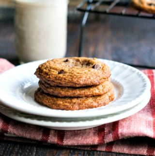 These Paleo Chocolate Chip Cookies are not only delicious, they are very easy to make. A gluten free, healthy treat you can feel good about.
