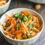 This crunchy Asian parsnip & carrot salad is fresh and tasty and you can make it in minutes. Lots of crunch from veggies, seeds and nuts tossed in an Asian dressing.