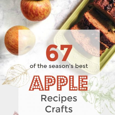 67 of the season's best apple recipes, crafts, activities and more!