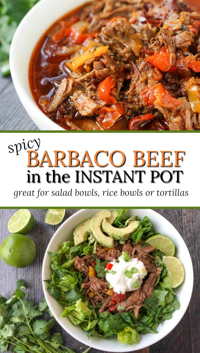 white bowl and salad with spicy barbacoa beef with text overlay