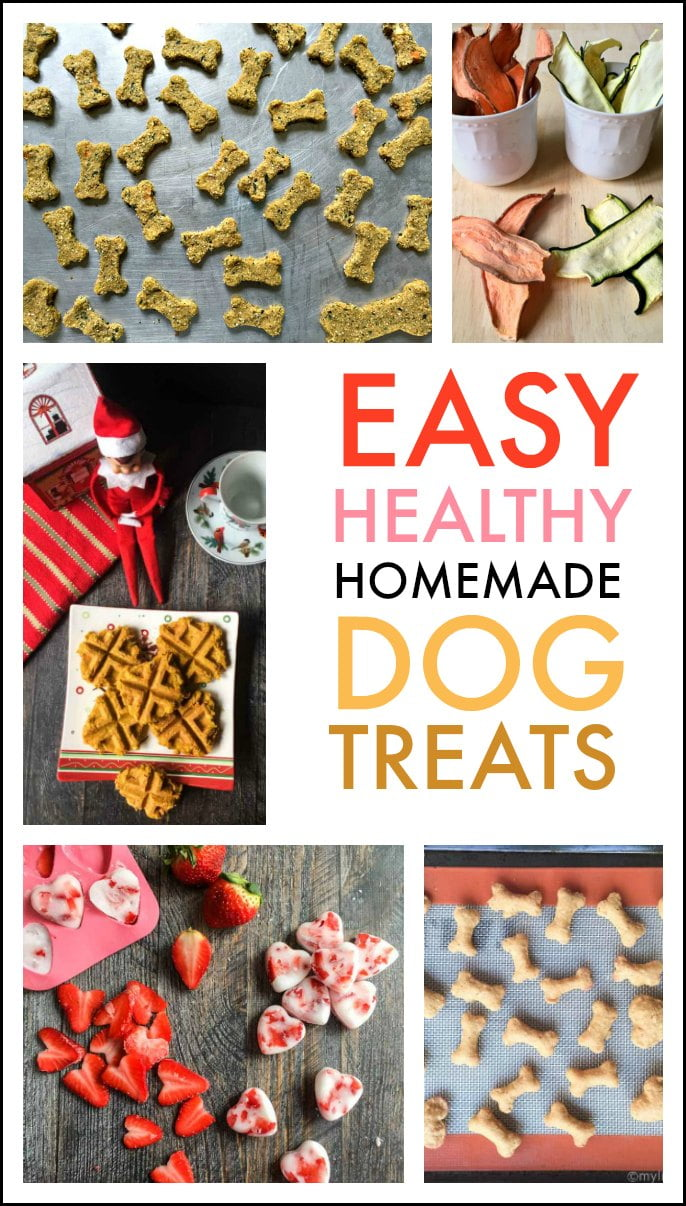 homemade dog treats my life cookbook low carb healthy everyday