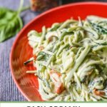closeup of creamy zucchini noodles on red plate with text overly