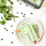 mint chocolate chip ice pop on plate with herbs and with text overlay