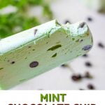 mint chocolate chip ice pop with text overlay