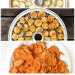 dehydrator trays with zucchini chips nacho flavored with text overlay