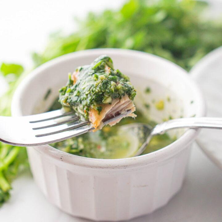 Keto Cilantro Chimichurri Sauce Recipe for Tuna Steaks