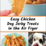 plate of chicken dog jerky made in air fryer and text