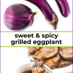 white plates with grilled marinated eggplant and text